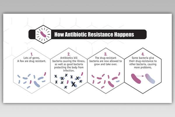 antibiotic