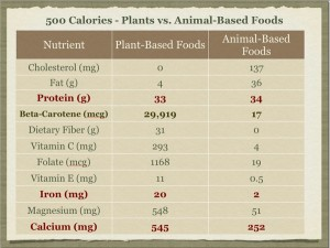 500 Kcals Plants vs. Animals