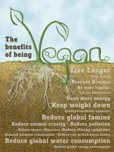 Vegan Benefits High-Functioning Daydreamer