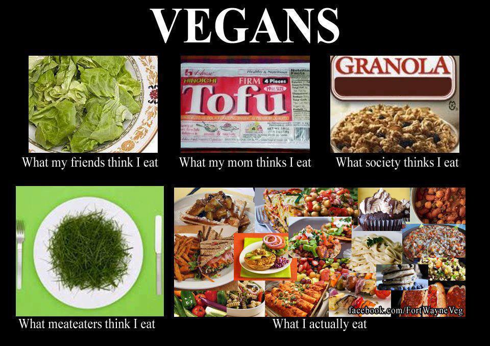 vegan eat vegans dinners